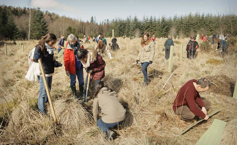 Caroline Wendling – Over 700 trees are planted!
