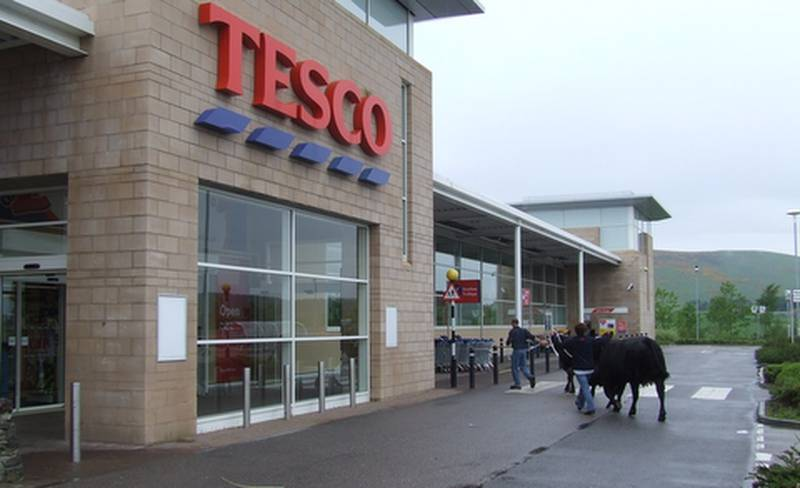Red Herring Cows at Tesco